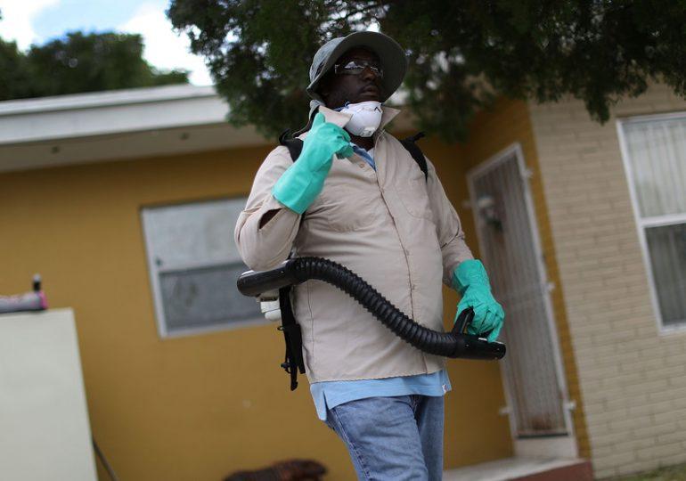 Plagas por la Pandemia/Pandemic Pests
